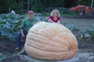 Guiness Book of Records world's biggest pumpkin: