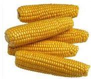 corn syrup: