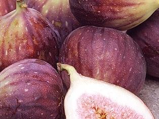 fresh figs: