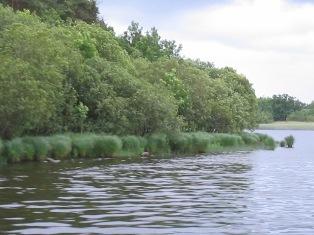 lake crossing: